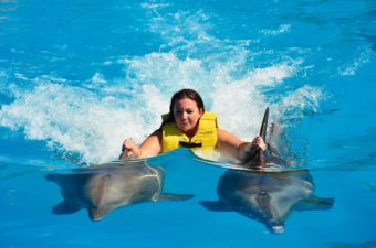swimming-with-dolphins2.jpg